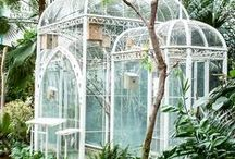 g a r d e n s / gardens and outdoor rooms / by Jessica {The Aestate}