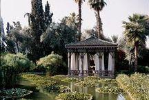 Fantasy Gardens / Fantasy gardens