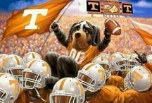 Go Vols! / by Angie Wilson