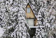 cabin / Cabin and rustic decor