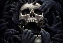 Skulls / #skulls