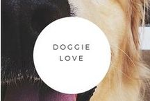 Doggie Love / All things doggie.