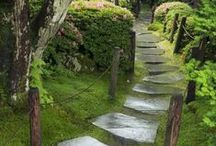 Step into the garden...... / by Rosemary Farley