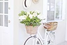 B I C Y C L E S / My favourite mode of transport. Pretty bicycles, flower baskets, pastel shades.