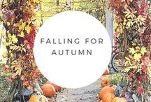 Falling for Autumn / My favorite season needs its own board...all things fall and autumnal goodness