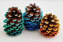 Pinecone party / I love pinecones
