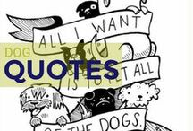 Dog Quotes / Some cool quotes about man's best friend