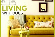 Living with Dogs / A home is not a home without a dog... Here are some cool, dog friendly home tips and decor ideas