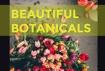 Beautiful Botanicals / Beautiful flowers, bouquets and floral arrangements
