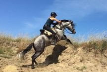Doñana Horse Adventure / Adventure horse riding trails in Doñana, Andalusia