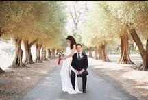 my wedding & inspiration / 10.20.12 Napa Valley