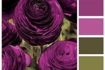 Colors Galore / by Denise Delgado