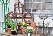 Garden Decor / Decorating a garden! / by Organized Clutter