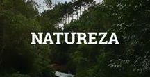 Natureza / As belezas da mãe natureza