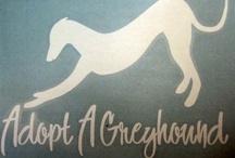 greyhounds / by Lisa McDaniel