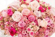 Flower Arrangements / by Jenny Honda