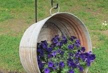 Fav Garden Ideas