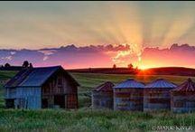 The Farm / by Heather B