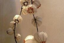 seeds . pods