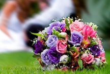 Wedding Bouquets / Wedding Bouquets. Wedding flowers are essential to the whole wedding experience. Wedding Bouquets photos gallery can help you find the best flowers and the best design.