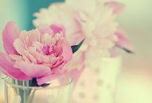 Flowers'50
