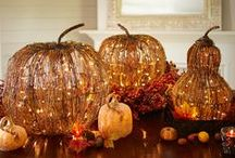 Holidays / Covering Halloween, Thanksgiving, and Christmas / by Grace Eskew