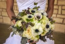 Bouquets / Wedding Bouquet Ideas