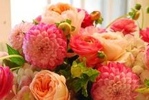 Flowers / Ideas for table scapes and much more!
