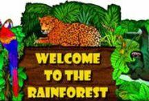 Rainforest Theme / Rainforest theme ideas for early childhood