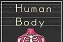 Human Body Theme / Printables and ideas for a human body theme