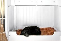 Love: Dogs / Dog stuff that I LOVE