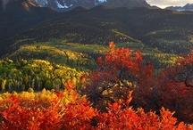 Colorado  / by Marti Randolph