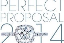 Perfect Proposal 2014 / http://www.leohamel.com/perfect-proposal/