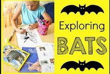 Bat Theme / All About Bats {with a focus on the book, Stellaluna} / by {1plus1plus1} Carisa