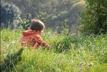 Unschooling/Natural learning / by Shae
