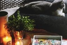 Decorating Ideas / by Kristin Attridge