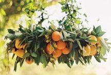 Orange Wedding Colors / Orange wedding color palette ideas and inspiration
