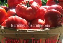 Organic Gardening - Fruits, Vegetables, Herbs and Flowers