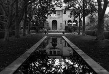 Home Sweet Home  / by Morgan Hollman