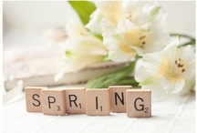 Spring / Spring is here and we are loving it.  A good drenching rain each week is keeping everything blooming and blossoming.