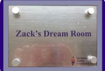 Zack's Dream Room / Following the journey to make this dream come true...for our Zackie.
