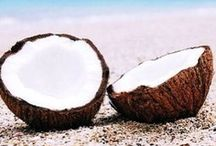 COCOnut! / for all those coconutty treasures to keep the isle vibe alive