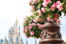 All Things Disney / Disney parks, movies, characters...I love it all!