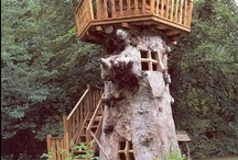 Treehouses / I have always loved treehouses! Had a few, would love to find a way to live in one full time. What's not to love? / by Ricky Simmons