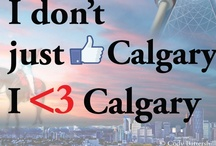 Why Calgary / Why Calgary is exactly that. What makes Calgary the 5th best city to live in the world and an amazing place to call home. Photos, statistics, facts and more. / by Cody Battershill
