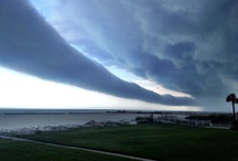 Weather Pics / by First Coast News