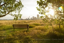 Epic Calgary Skyline / The best and most amazing photos of the Calgary skyline! Home to Canada's largest concentration of head offices per capita. / by Cody Battershill
