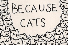 Because I just love Cats.