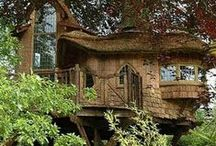 ╭✧Tree house / by ╭✿ Monique ✿╮