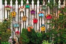 For the birds / Birdhouses, bird feeders.. Stuff I'd like to put in our yard, birds I've seen in our yard,  stuff I just like..